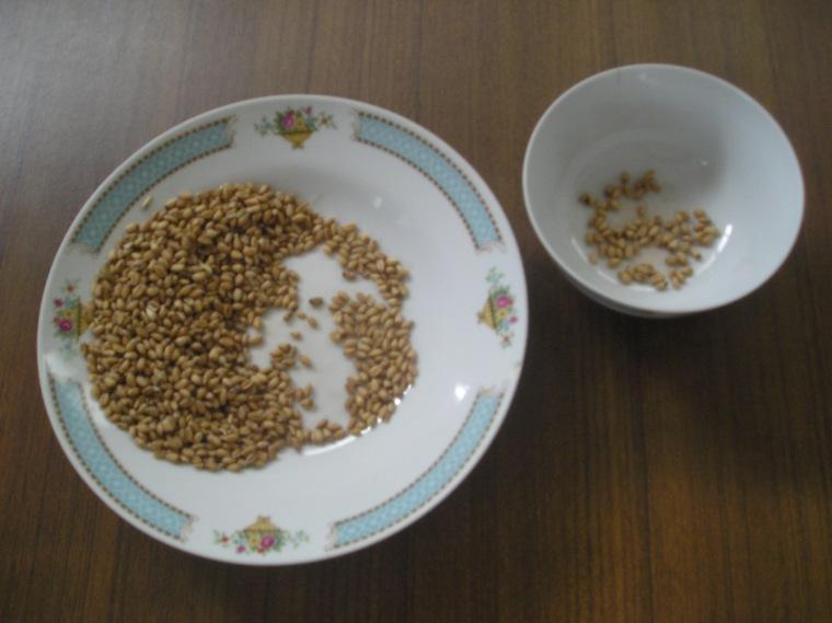 小麦粥 药用粮食